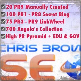 ✪SEO service: your website is $$$_ Pr1-Pr8✪_Google PANDA AND PENGUIN 100% SAFE
